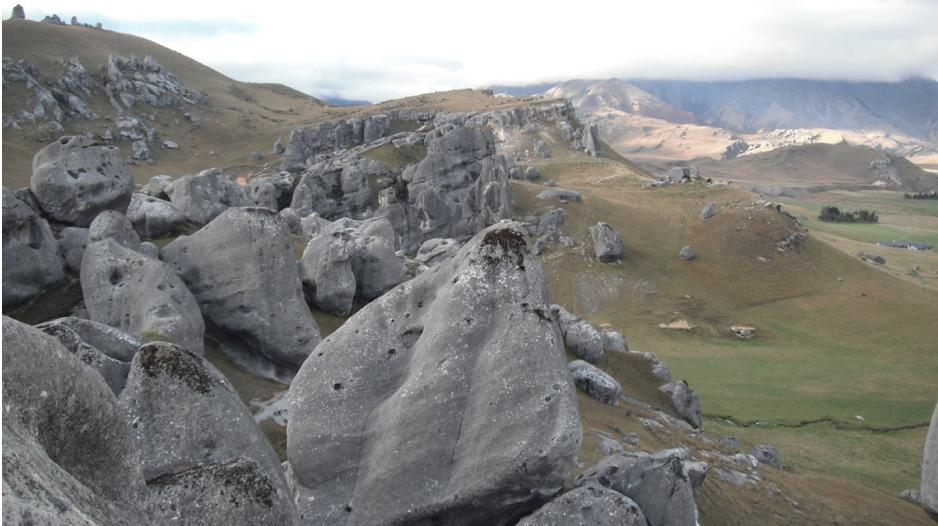 NZ castle hill