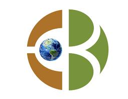 Earth Big Data LLC
